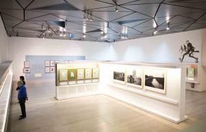 """Exposición """"Sileno. Tambores en la batalla"""", vista. Museo ABC, Madrid, 2016."""